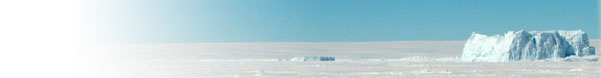 An Antarctic landscape
