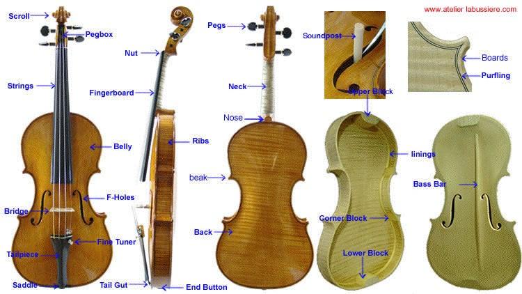 essay pedagogy violin